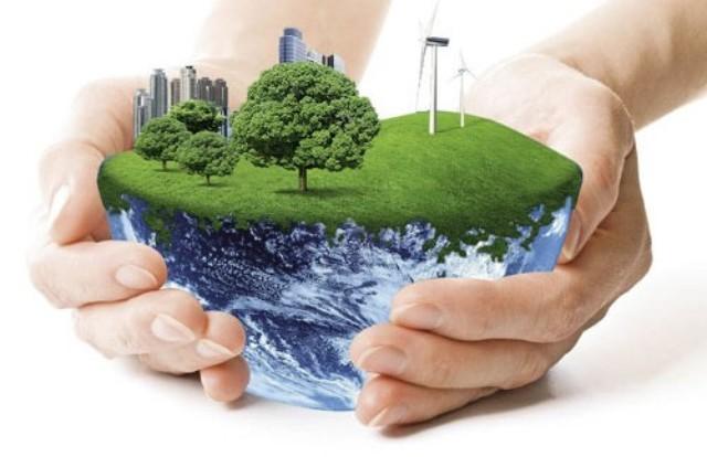 环境污染的危害太大了 保护环境是我们大家都必须做的事
