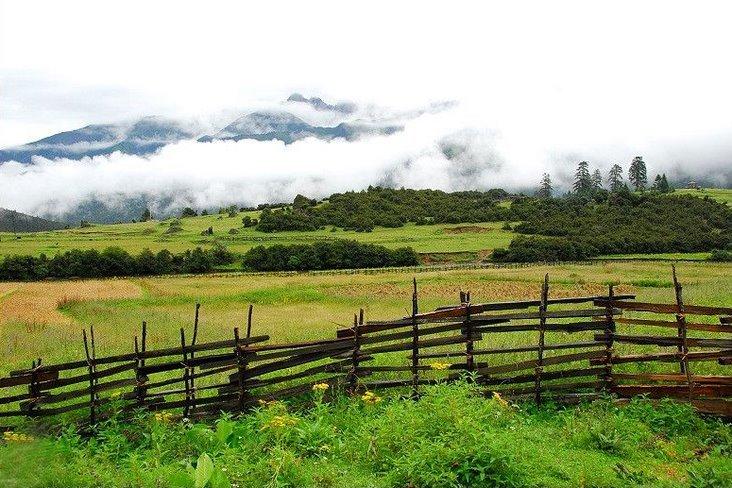 农村土地承包政策时时变,形式变迁有哪些情况呢?