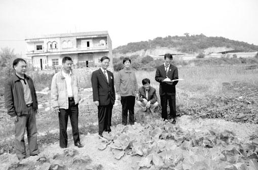 农村土地纠纷律师