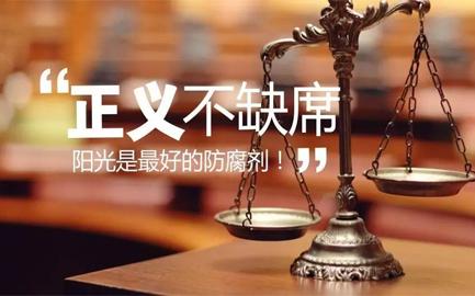 刑事辩护律师所