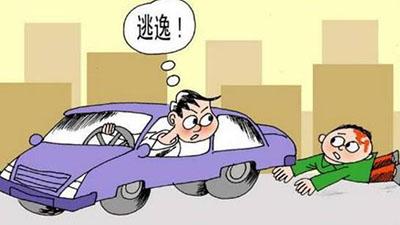 交通事故法厅调解需要请律师吗?请律师作用是什么?